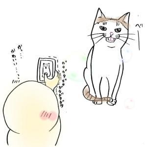 さいかわ猫撮影奮闘記〜カンタン撮影テクニック!〜