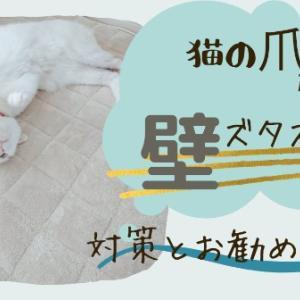 【猫の爪】引っかき!壁ズタズタ被害!!対策とお勧め商品