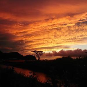 素敵な夕日が撮れました(^^)/ 癒し写真UP