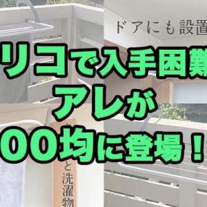 【100均】家中で大活躍!入手困難の超人気収納ラックがキャンドゥで買えると話題!?