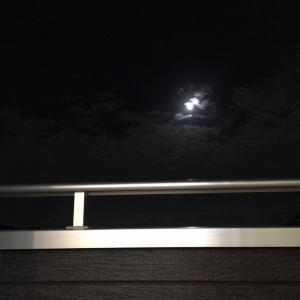 【大福食べて】月に願いを