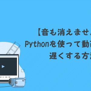 【音も消えません!】Pythonを使って動画速度を遅くする方法