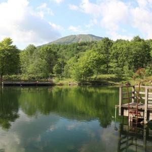 【管理釣り場】釣り堀でのヘラブナ釣り入門