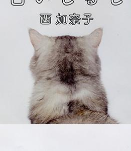 【読書感想・レビュー】白いしるし/著:西加奈子