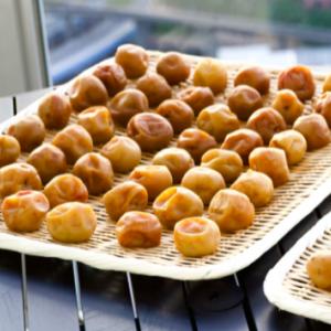 🍆野菜発酵🍆の技術がすごい🥬㈱ピックルスコーポレーションの株主優待案内の内容❣️