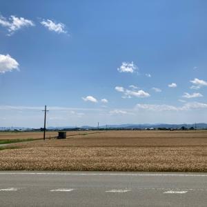 小麦の倉庫でバイト