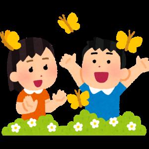 【海外反応】日本にも分布しているコノハ蝶の生態が話題に