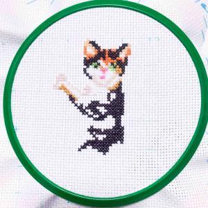 ALISA・Dancing Cats|3