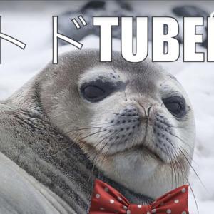 なんと!ゲーム好きのトドがYouTuberデビューしました!