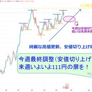 【太朗の裁量トレード奮闘記~米ドル/円 編~ 21/6/14~6/18】