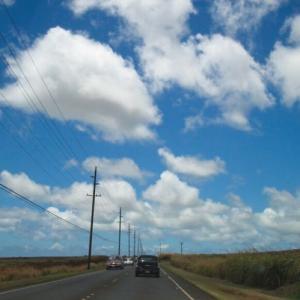 世界を旅したいが、なぜかハワイにハマってしまった〜♪