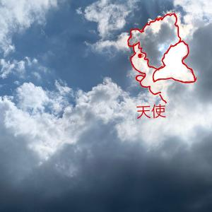 光る羽の天使(拡大版)<解説編>