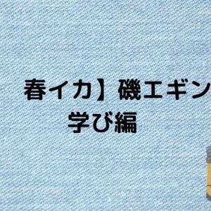 【天草 春イカ】磯エギング① 学び編