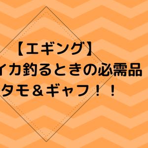 【エギング】デカイカ釣るときの必需品のタモ&ギャフ!!