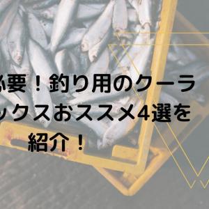 夏は必要!釣り用のクーラーボックスおススメ4選を紹介!