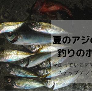 夏にアジのサビキ釣りをしたい!!~サビキ釣りのステップアップポイントとして~