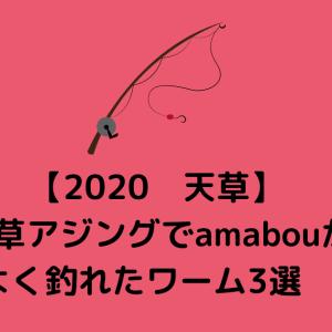 【2020 天草】天草アジングでamabouがよく釣れたワーム3選