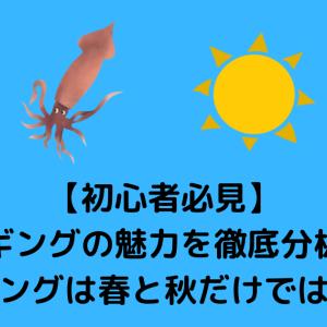 【初心者必見】夏エギングの魅力を徹底分析!!~エギングは春と秋だけではない~