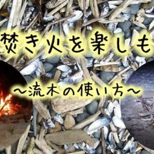 流木を使って海で焚き火をしよう!【沖縄キャンプ】