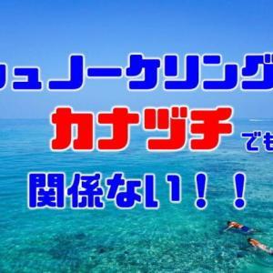 シュノーケリングは泳げなくてもできる?【結論:できます】