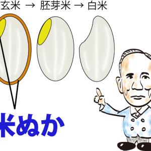 世界最初に「ビタミン」発見 脚気に効果の米ぬか研究で