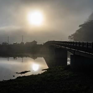 今朝の散歩写真