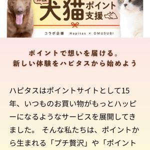 ポイントインカムでできる保護犬猫ポイント支援!