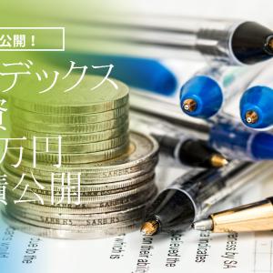 【インデックス投資】投資信託110万円購入した運用実績は?【NISA】