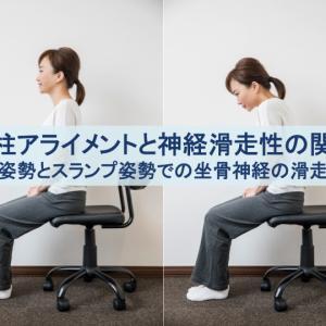 脊柱のアライメントと神経の滑走性の関係性:座位におけるスランプ肢位と直立肢位の差