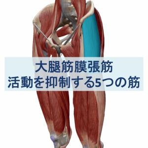 大腿筋膜張筋を抑制するために必要な5つの筋肉の活動