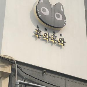 【韓国】smtown coexartiumに一人で行った話