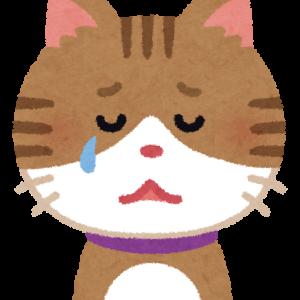 【許すまじ温○菜】私が経験したブラックバイトとリゾバのススメ(リゾバのメリット、デメリット)