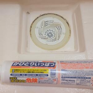 お風呂のゴムパッキンのガンコそうなカビを一晩で取る方法!