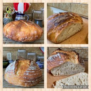 パンを焼き始めて1年経過
