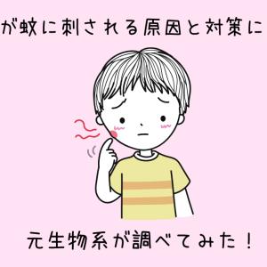 【蚊対策】子供が蚊に刺される原因と対策について元生物系が調べてみた!