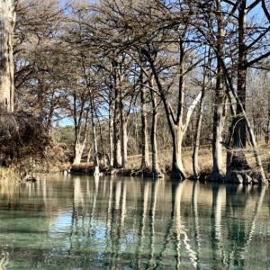 【テキサス観光】テキサスで一番綺麗な川でカヤック・チュービング【Medina River】