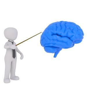 あなたのその感覚を 脳科学で。