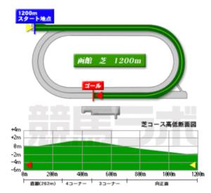 【レース分析】過去10年の結果から函館2歳ステークスを読み解く【函館2歳S】