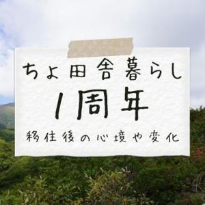 【田舎暮らし】1周年記念!移住後の心境や変化について