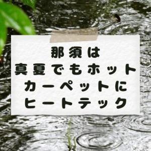 雨ばっか…寒い…[那須は真夏でもホットカーペットにヒートテック]