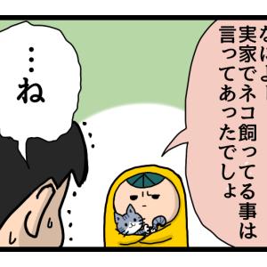 漫画 とーすけと猫と妻の実家 ②