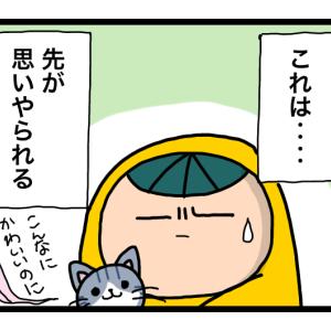 漫画 とーすけと猫と妻の実家 ③
