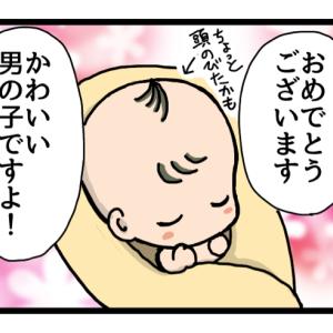 第一子誕生までのお話:24~最終話。