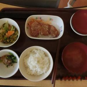 突発性難聴覚書-15【 夕食  】