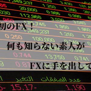 【体験談】人生初のFX!何も知らない素人がFXに手を出してみた【DMM FX】