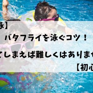 【水泳】バタフライを泳ぐコツ!慣れてしまえば難しくはありません!【初心者】