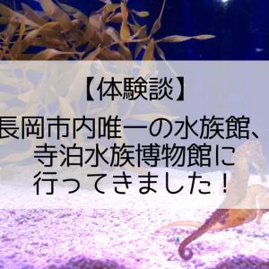 【体験談】長岡市内唯一の水族館、寺泊水族博物館に行ってきました!