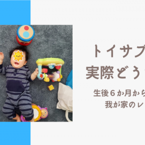 【知育玩具】生後6か月から始めたトイサブ!を選んだ理由と正直な感想