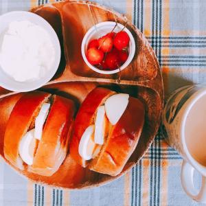 たまご食べ過ぎ🤣とFreestyleリブレセンサー交換日