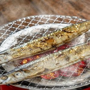 かつての大衆魚はいまや高級魚?サンマのお話